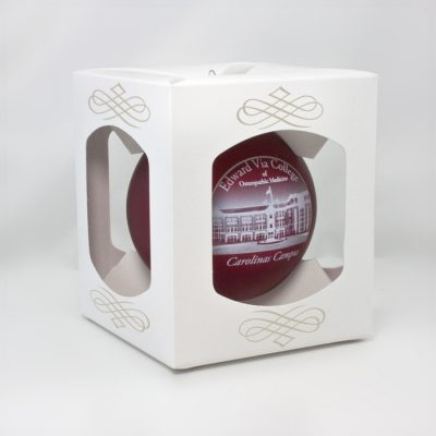 Glass Ornament Packaging